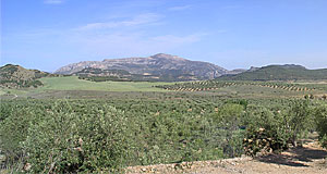 Andalusien, bei Ronda